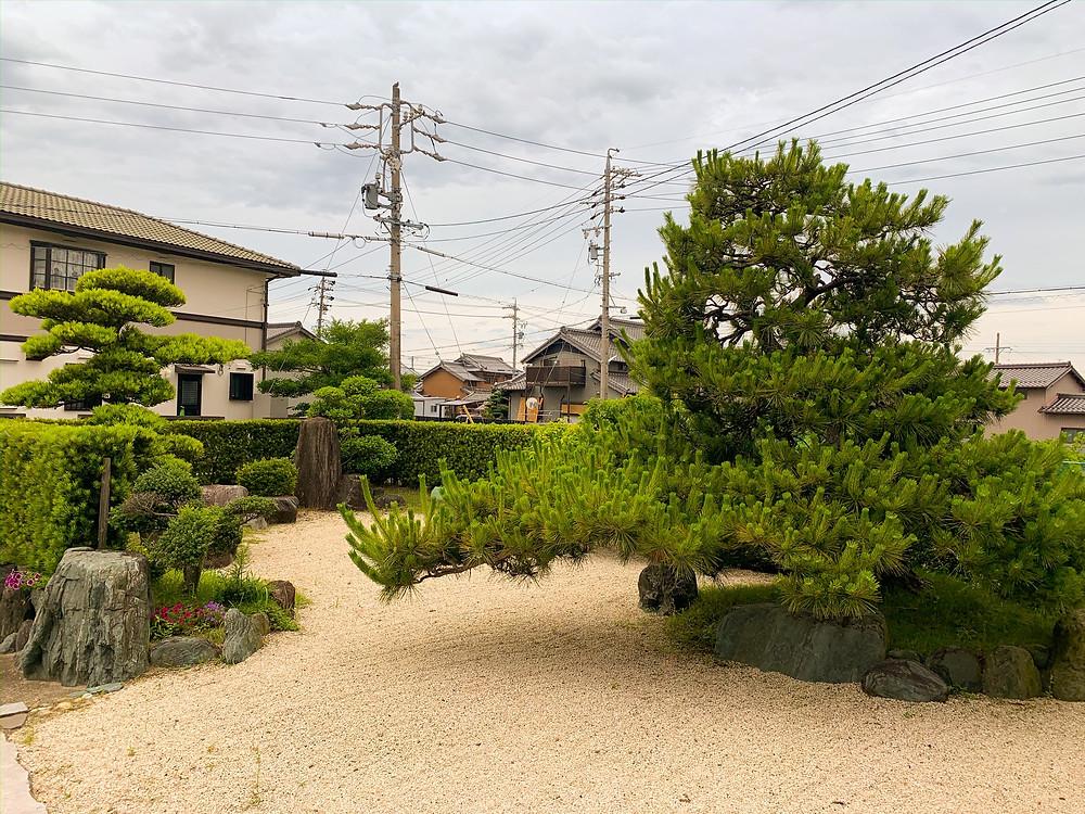 三重県桑名市にてお庭お手入れ 黒松などの剪定作業|剪定屋空