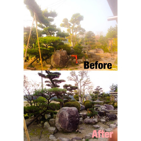 四日市植木の剪定 お庭全体メンテナンス剪定刈り込みなど