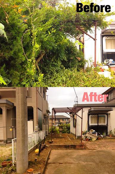 三重県 空き家 伐採