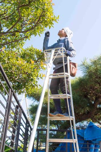三重県 植木屋