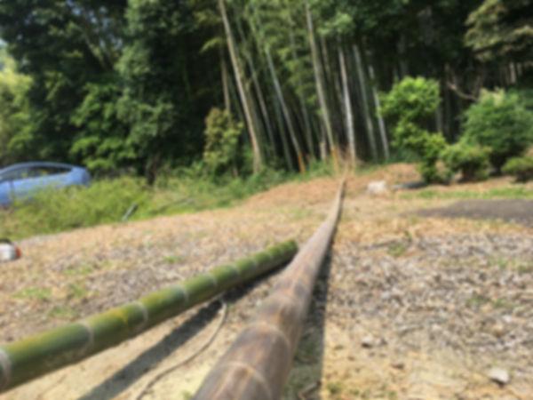 三重県 竹やぶ 伐採