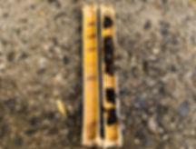 タイワンタケクマバチ 営巣