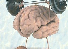 weight-lifting-brain-893x900_edited_edit