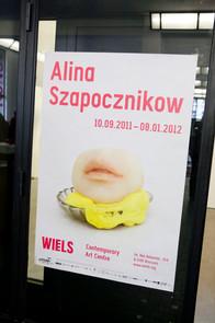 Alina_Szapocznikow_Wiels_Expo_2011_012.J