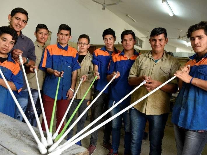 La plaga de la Escuela Juana Manso de Villa Allende Córdoba