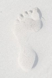 imagesF7NP0MLQ_edited.jpg