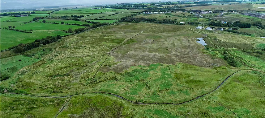 Forest Surveys UAV Mapping