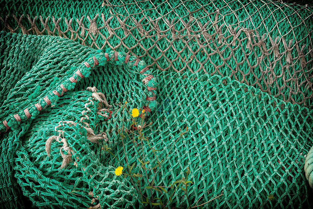Green professional fishing net