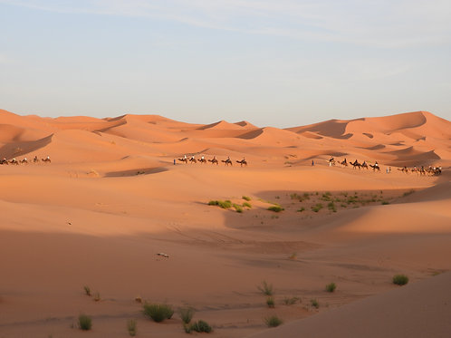 04 DAYS / Dunes of Erg-Chebbi, Dadés valley and  Todra Gorges.