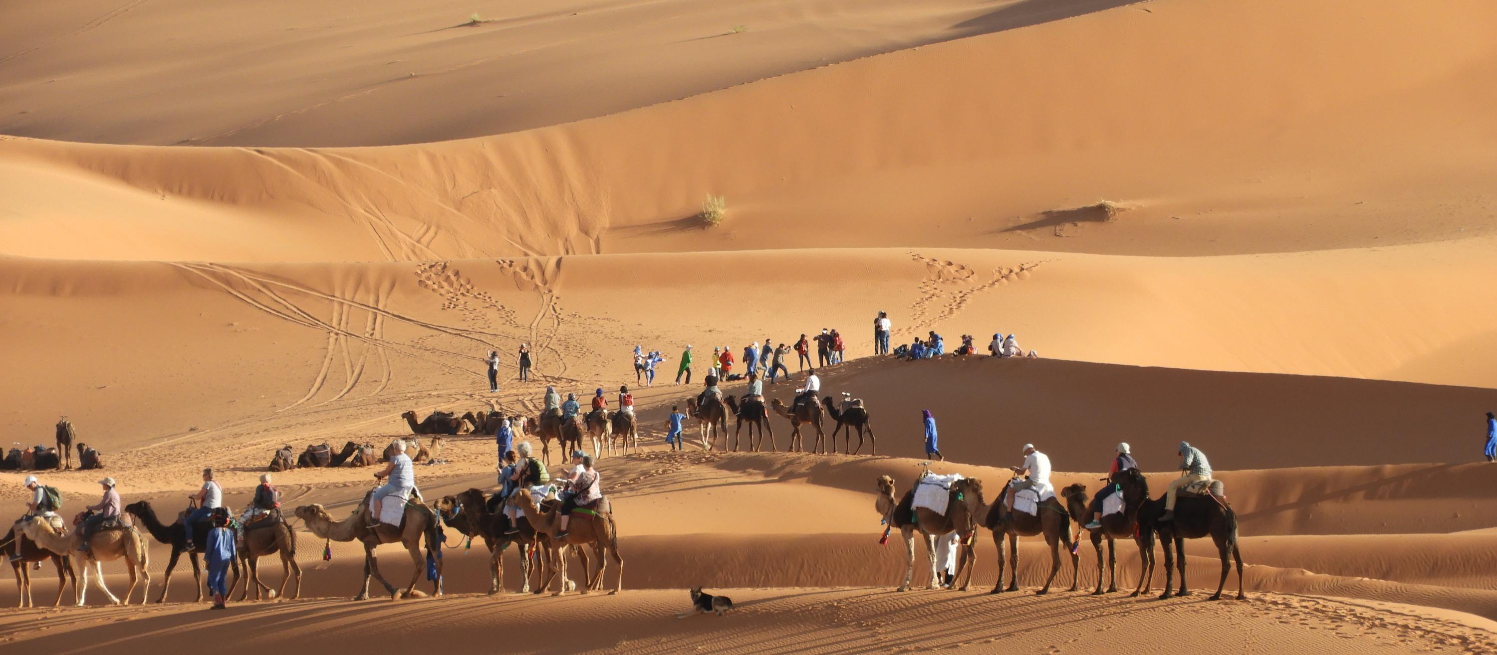 EXCURSION IN MERZOUGA DESERT
