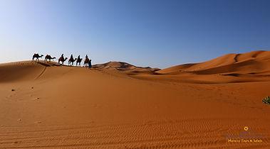Sahara Dream Tours site web, Marocco, da