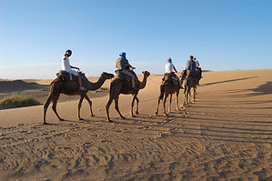 Morocco-Tour | tour-in-Morocco | Merzouga-Excursion | travel-by-4x4 | camel-trek | Dune-of-Erg-Chebbi | 04 Days |in-03-Days | Morocco 05 Days | Marrakech-Excursion | Day-trip | Merzouga, Dadés valley | Sahara-Dream-Tours | Merzouga-tour | Departure from | Marrakech | from-Féz | From-Fés | Morocco excursion | Kasbah-of-Ouarazazate | Private-tour-in-Morocco | cycling-in-Morocco / cycling-in-Atlas | cycling-in-desert | Discover-Morocco | Morocco-travel-tour | welcome-to-Morocco | tour-operators-in-Morocco | Morocco-travel-agency | in-group-departures | individuale departures | Morocco-on-tripadvisor |