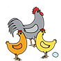 RHOC logo 2020 chickens only.png