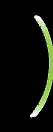gruener Bogen.png
