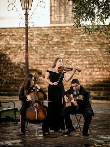 Eleganza String Trio