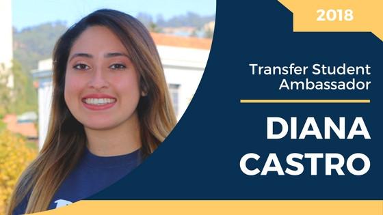 Introducing Diana Castro, profile pic