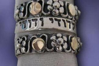 Everlasting Love Rings Silver
