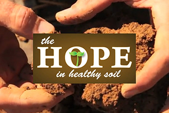 Soil - We Really Can't Live Without It!