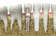 Dental Implants - A guide