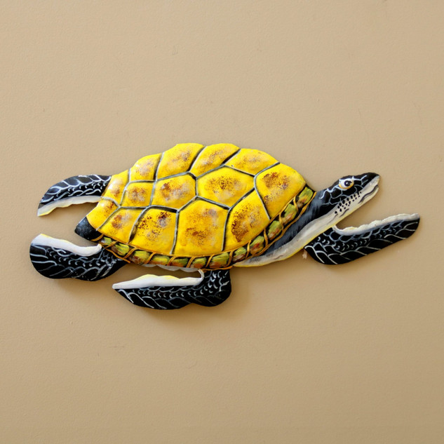 Painted Grandfather Turtle