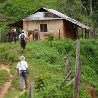 Camino Real del Carrizal