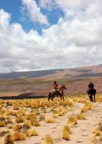 Atacama Horseback.jpg