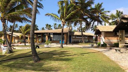 Coconut ride, Ekkaia
