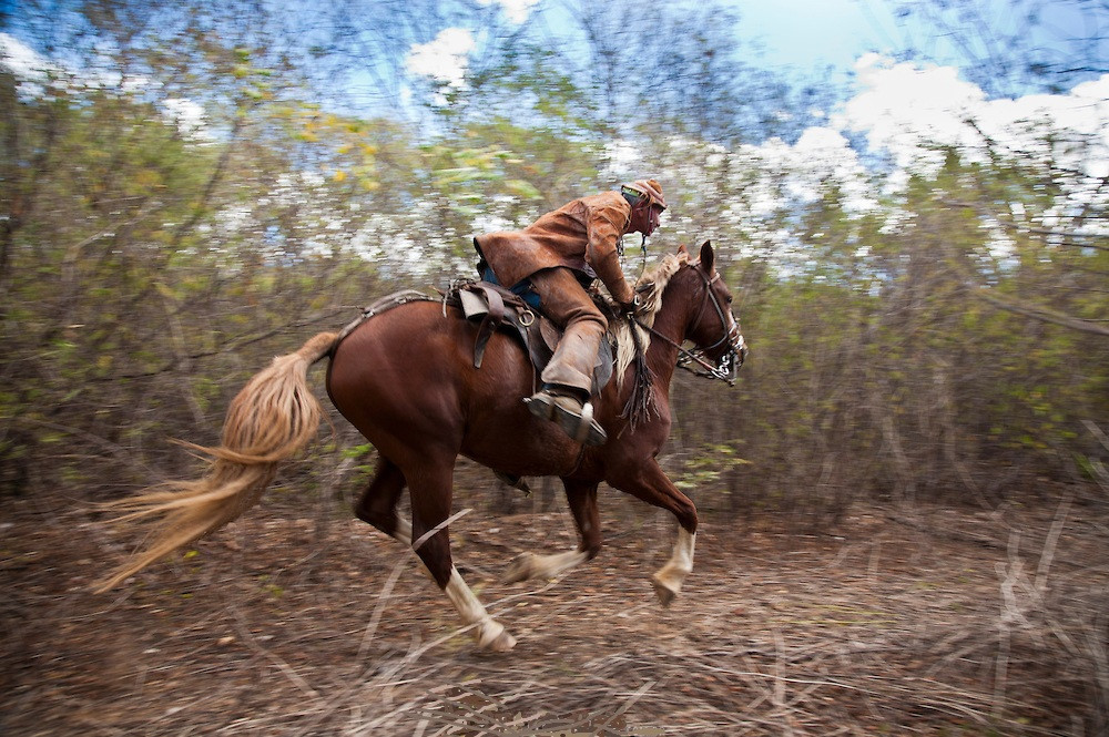 O Sertão, the Brazilian Outback on Horseback, Brazil.jpg