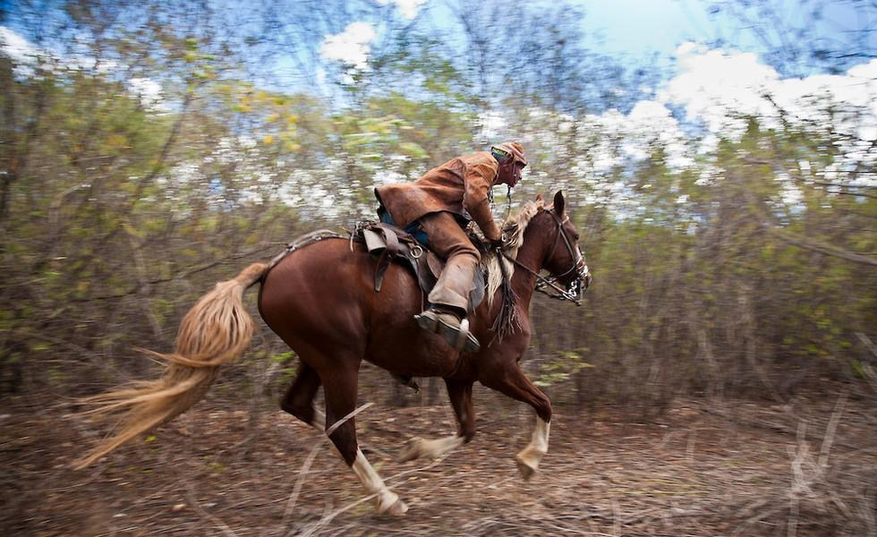 O Sertão, the Brazilian Outback on Horseback, Brazil.jpg