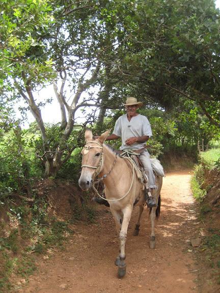 Estrada Real 2 379.jpg