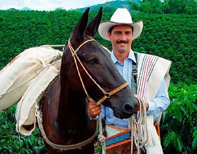 The Coffee Trail Ride, Colombia