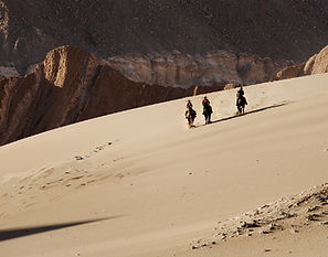 Atacama Horseback Expedition, Chile