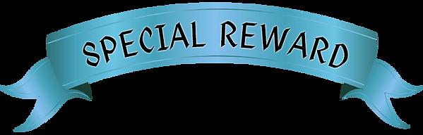 special-reward copy.png