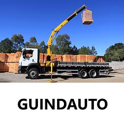 Guindauto-Hidráulico-Locação-Portal-Governo.png