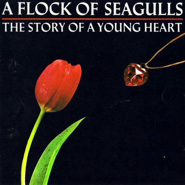 A FLOCK OF SEAGULLS: The story of a young heart
