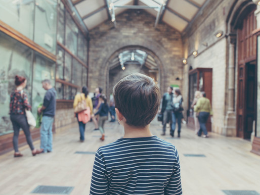 The 10 Best Virtual Field Trips For Kids