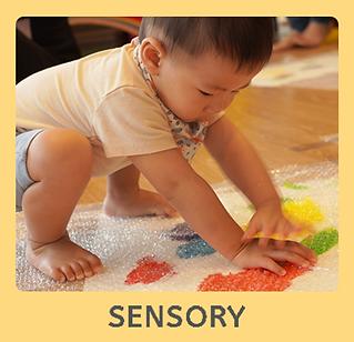 C_sensory.png