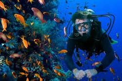 mergulho 3