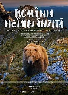 Rumania_indomable-912542322-mmed.jpg