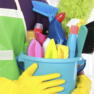 house-cleaner (2).jpg