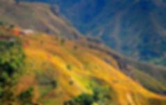 haiti-79646_960_720.jpg