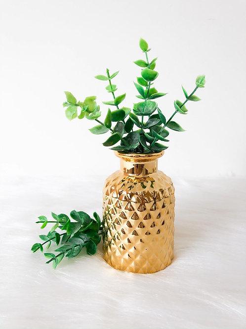 Vasinho Dourado