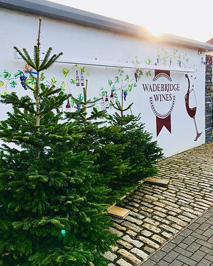 Prestige Christmas Trees - For Sale in Wadebridge & Newquay, Conwall. Locally Sourced & Freshly Cut Nordmann Fir, Non-Drop Needles.