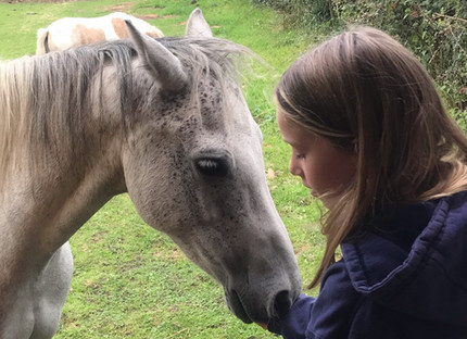 Have your parents or teachers suggested equine therapy?