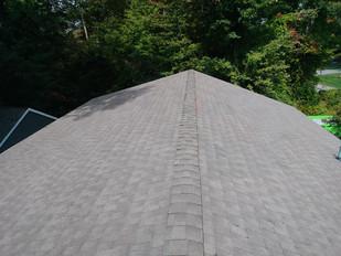 roofing 1.jpg