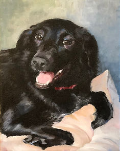 Labrador Retriever Pet Portrait 8 x 10 oil painting
