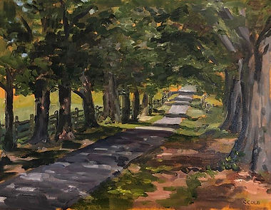 Driveway Shadows  11x14 Plein Air oil on