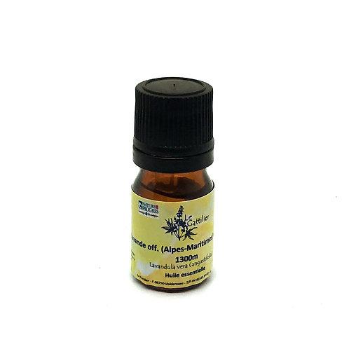 lavande officinale huile essentielle bio paris pharmacie des deux lions
