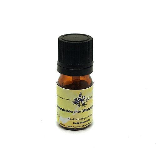 gaultherie odorante huile essentielle bio paris pharmacie des deux lions
