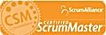 Agile certified scrum master